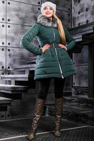 Куртка зима 876.2355